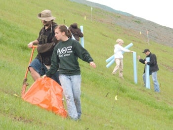 Glenville State College students plant trees on a hill near Yeager Airport in 2010.