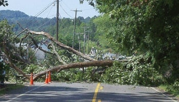 The June 29 derecho pulled down many old trees by their root balls, sending them over power lines. The powerful wind storm also bent major transmission lines in half in parts of the state.